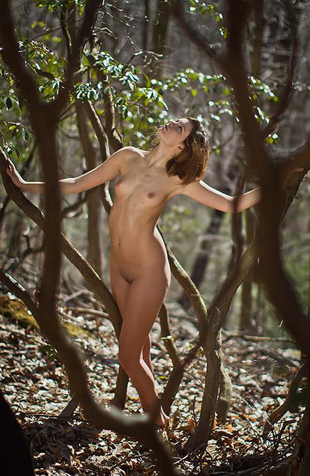 tangled_tree