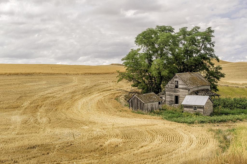 The Ole Farmstead