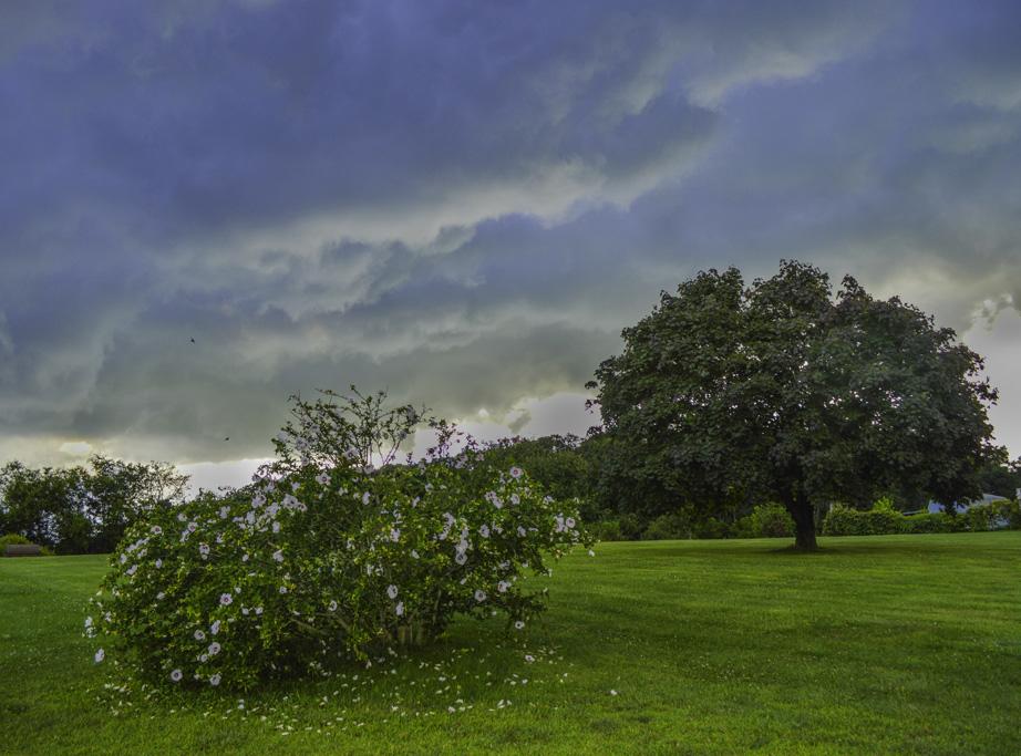 begining_of_storm