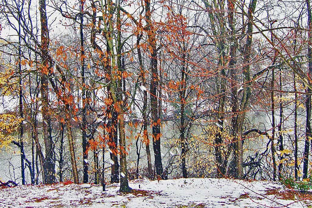 falling_snow