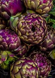 purple_artichokes