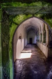 Inside_Muckross_Abbey