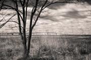 bay_bridge_infrared