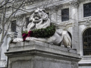 nyc_library