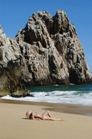 wildlife_at_lands_end_cabo_mexico