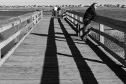 marshwalk_shadows