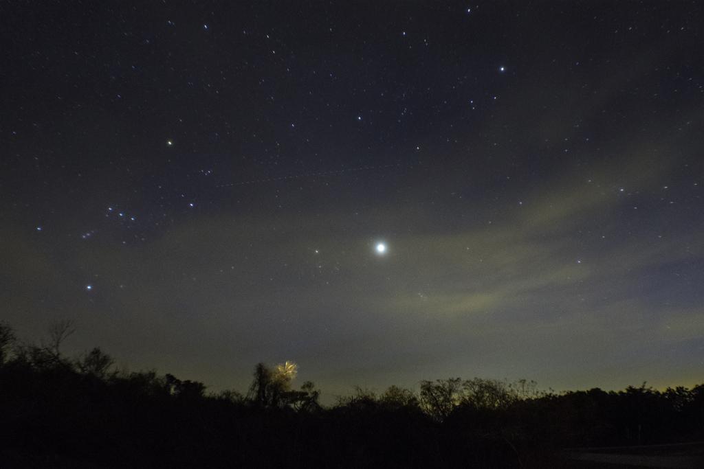 night_sky_assateague