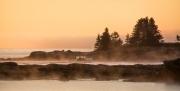 Boat_in_Fog