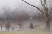 Pond_Fog