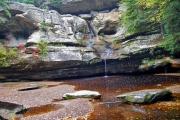 forest_rocks