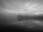 monochrome_fog