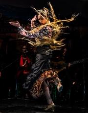 El_Baile_Flamenco