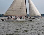 Skipjack Race Rosie Parks Final leg