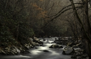 smokies_white_water