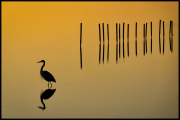 Blackwater_Sunrise