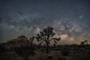Milky_Way_Over_Joshua_Tree