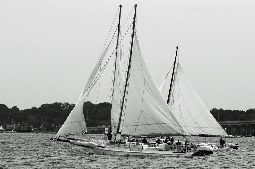 Starboard_Tacks