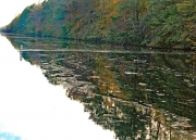 Dismal_Swamp_Canal