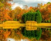 fall_pond