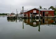 the_ewell_docks