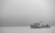 Fog_In_Cape_Breton