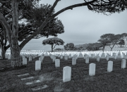 final_resting_place