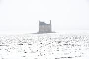 lonesome_snow