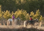 trail_ride_10_a