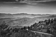 Cranberry_Ridge