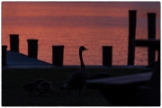 Sandy_Point_Sunset