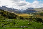 Sheep_Farm_ in_ Cork