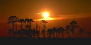 hoopers_island_sunset