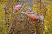 crabpots_and_floats